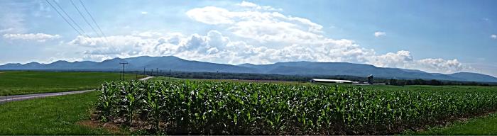 pano farmland2