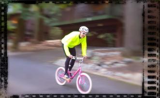 rental-bike-maybe