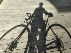 2017 bike shadow small