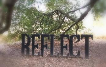 2017 reflect c